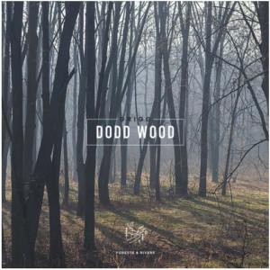 Drigg – Dodd Wood EP