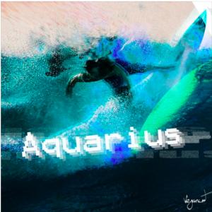 Vegancat – Aquarius