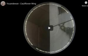 Youandewan – Cauliflower Wing