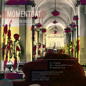 Momentdat – ZigZag